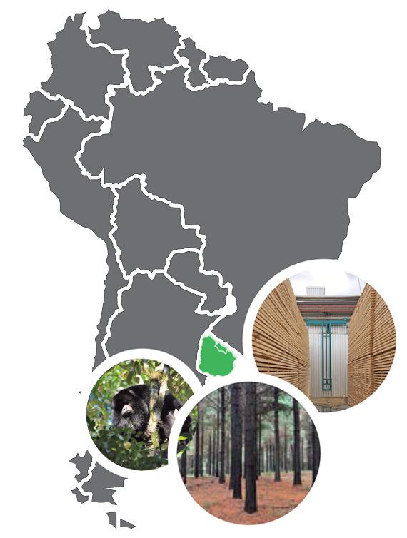 Map DANK